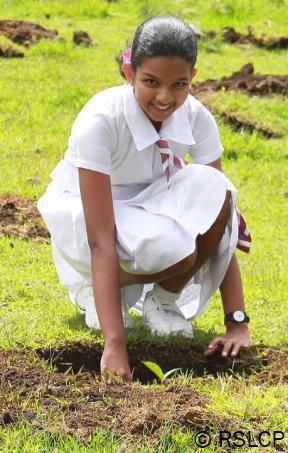 Sri lanka new badu 2 2